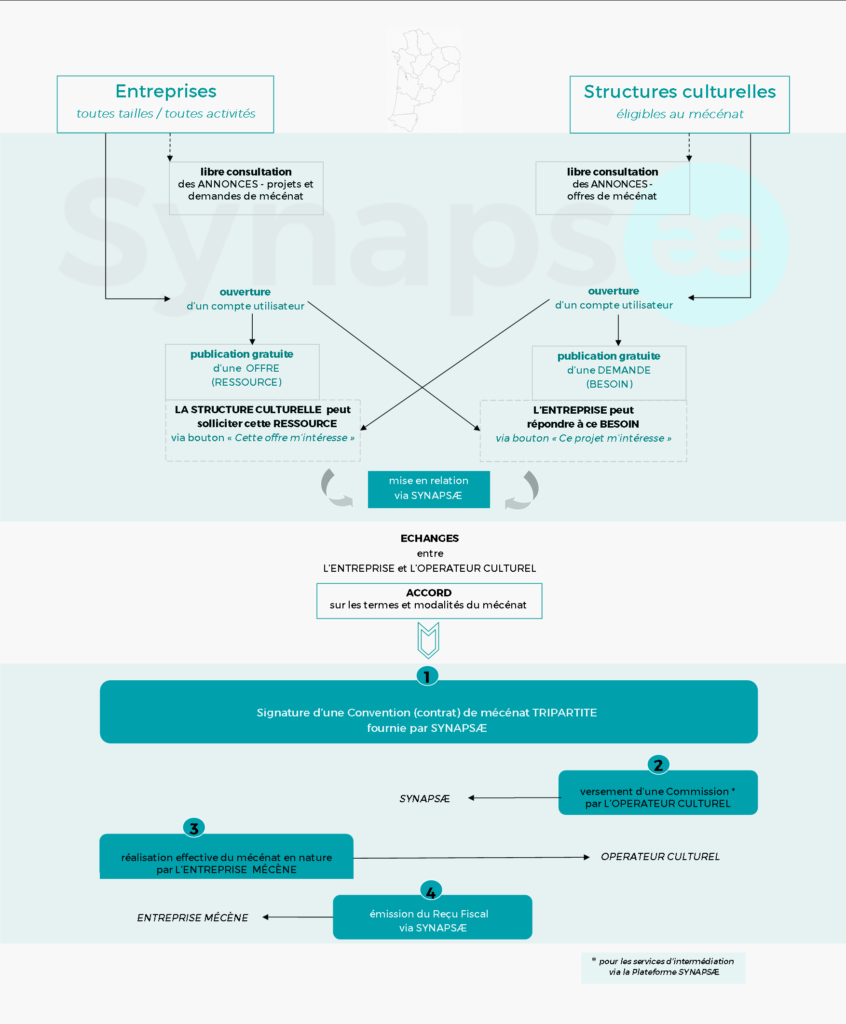 Fonctionnement_Synapsae_infographie-846x1024