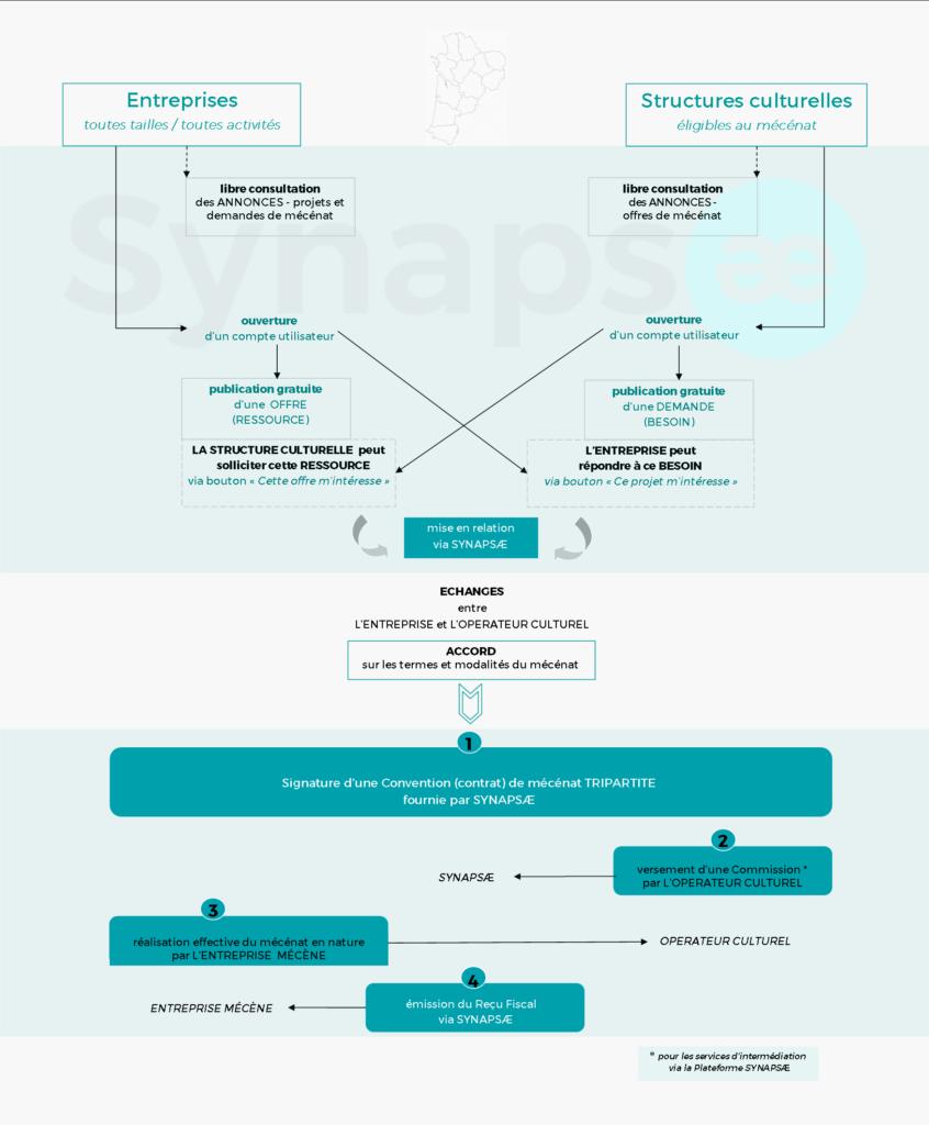 Fonctionnement_Synapsae_infographie-846x1024